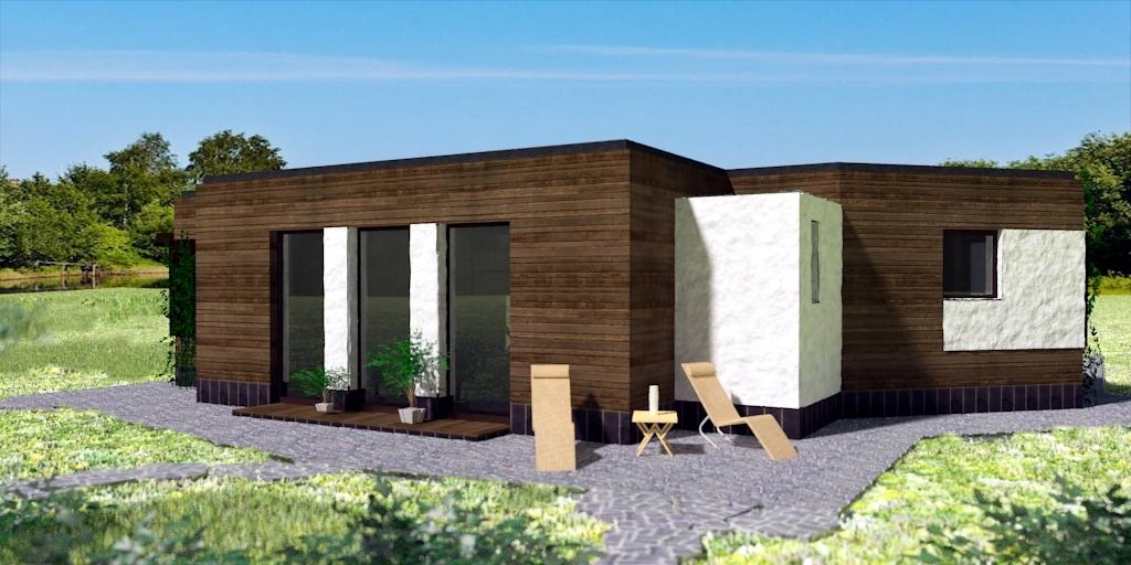 Внешний вид, Проект Шэннон; одноэтажный дом с плоской крышей и панорамными окнами