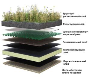 Проекты домов с плоской зеленой кровлей