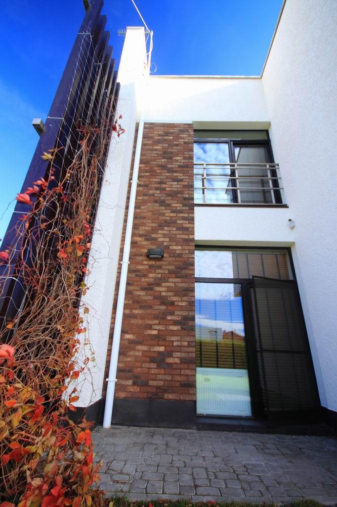 Проект дома с плоской кровлей, панорамными окнами и террасами - проект Эбро, трельяж