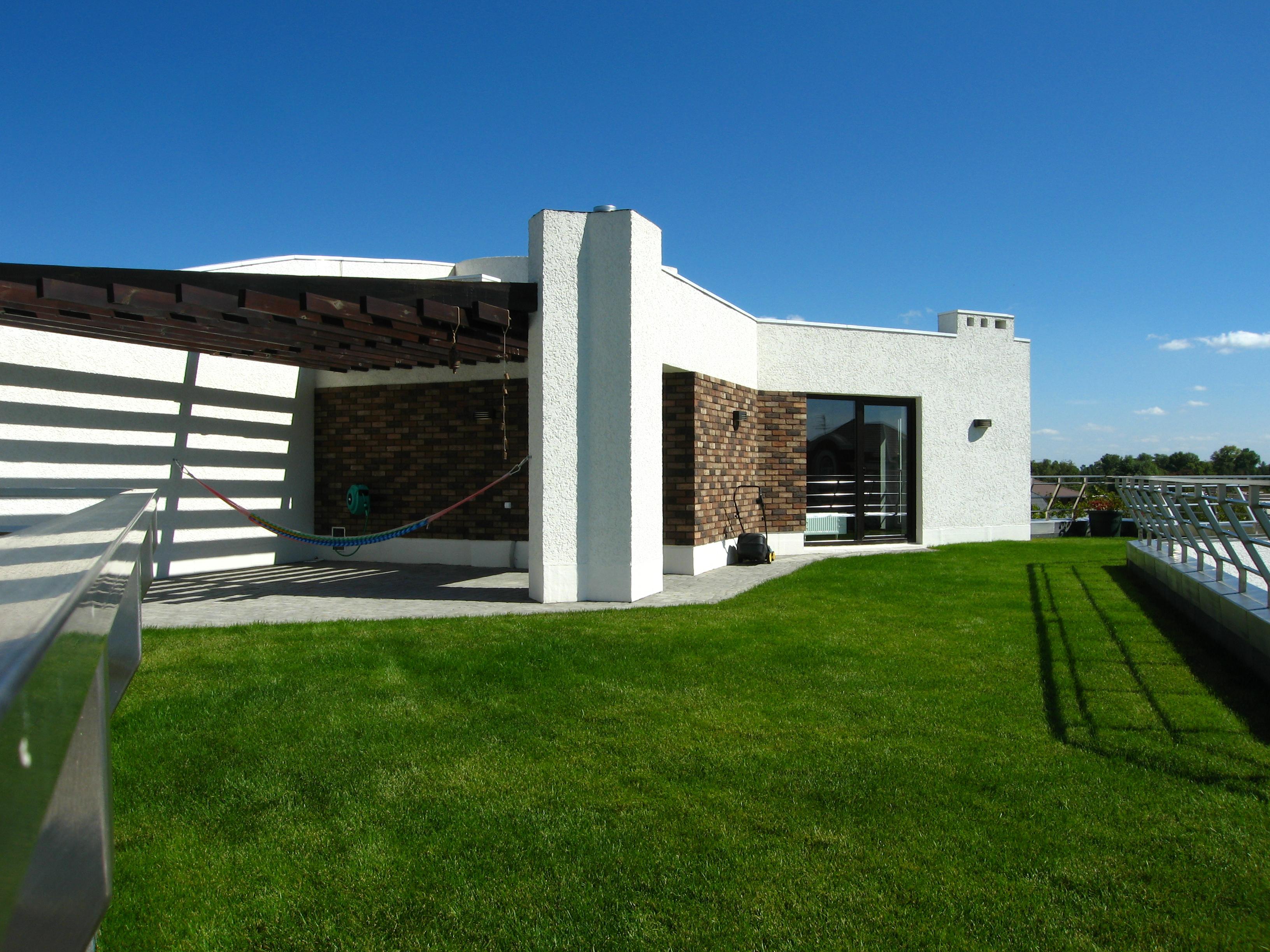 """Проект дома с плоской кровлей, панорамными окнами и террасами - проект Эбро, """"зеленая"""" кровля"""