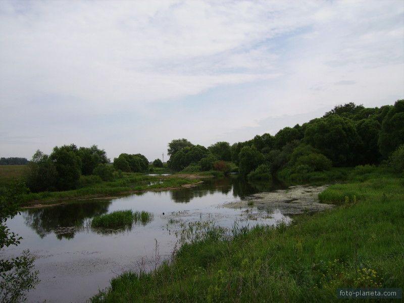 Река Сиверка
