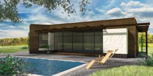 Проект Шэннон; одноэтажный дом с плоской крышей и панорамными окнами